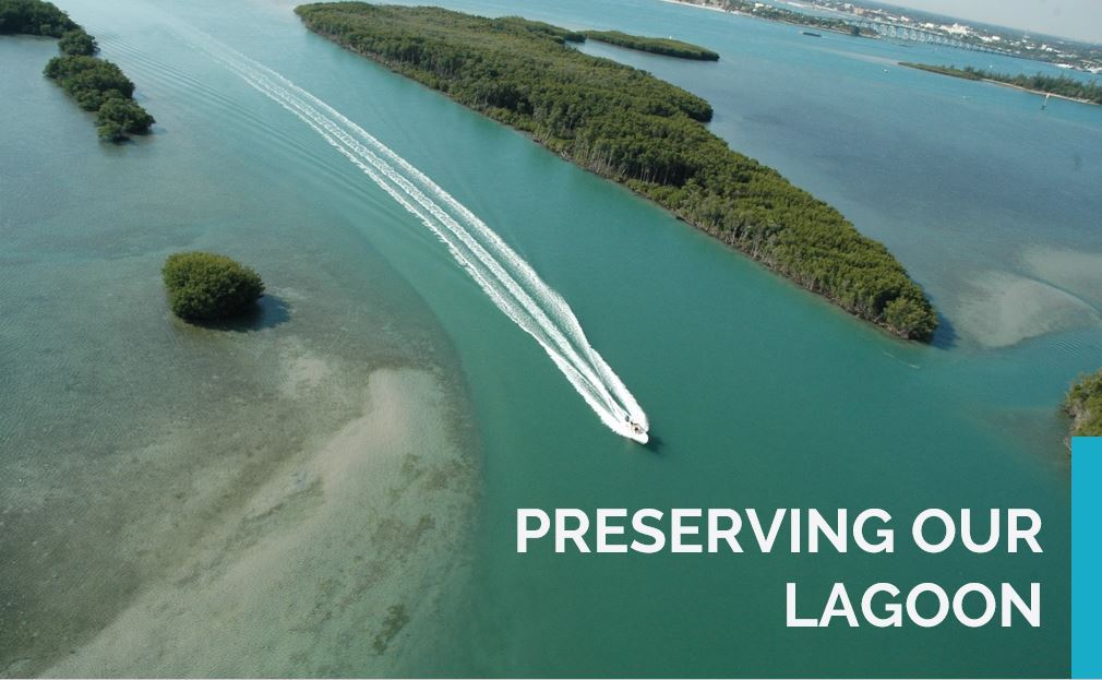 Preserving Our Lagoon