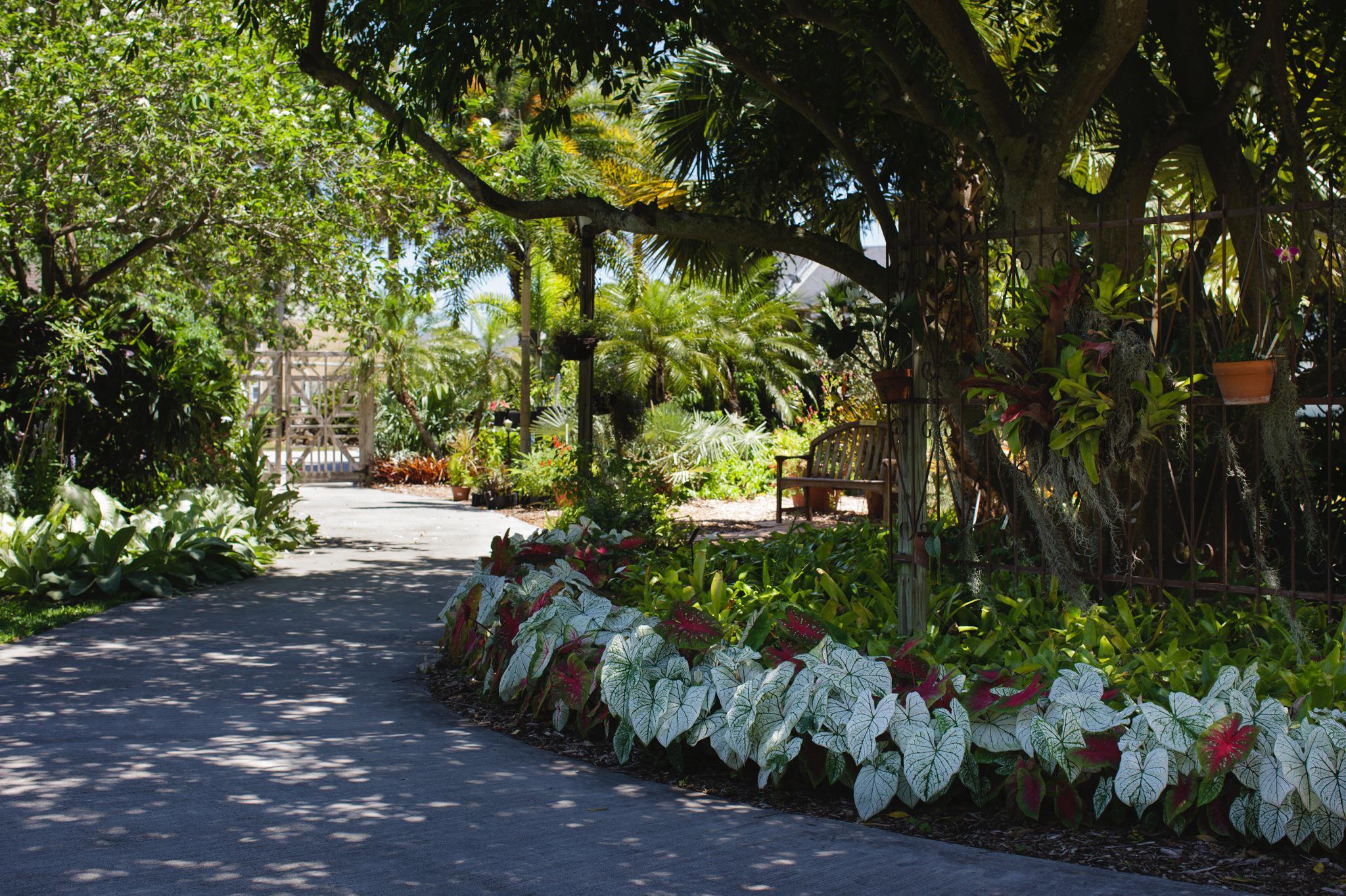 Heathcote Botanical Gardens: Official Website